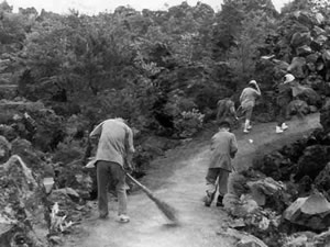 Construction of nature trail (1963)